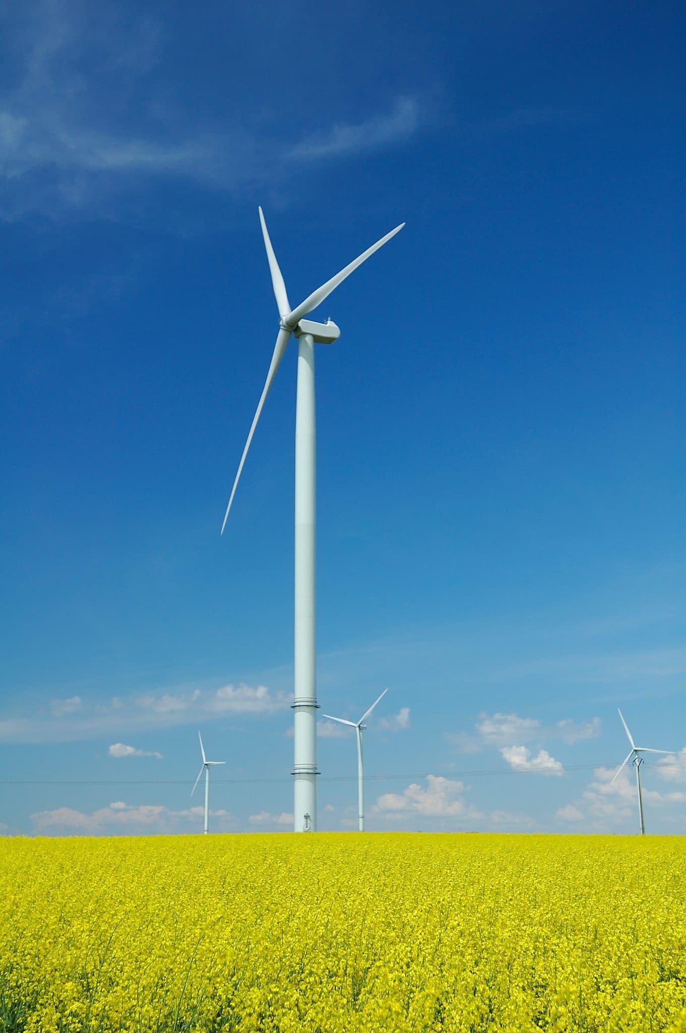 Auf dem Bild ist ein Windkraftpark auf einer schönen Wiese zu sehen. Der Himmel ist blau und es sind vier Windkrafträder zu sehen. Die Windkrafträder sollen die erneuerbaren Energien präsentieren und auf die Dienstleistung Energieservice von Service Oberberg lenken.